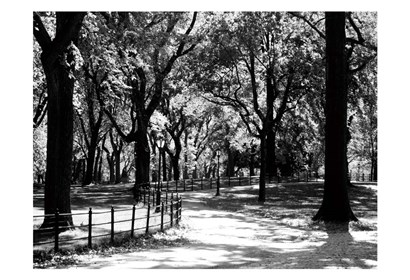Central Park Walk by Jeff Pica art print