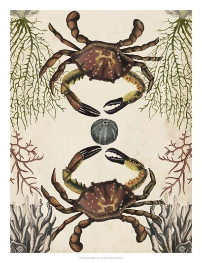Antiquarian Menagerie - Crab by Naomi McCavitt art print