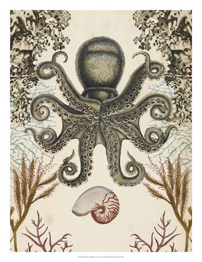 Antiquarian Menagerie - Octopus by Naomi McCavitt art print