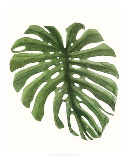 Tropical Breeze Leaves I by Naomi McCavitt art print