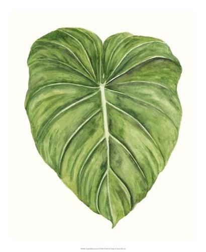 Tropical Breeze Leaves II by Naomi McCavitt art print