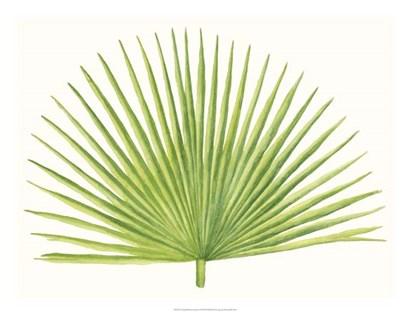 Tropical Breeze Leaves III by Naomi McCavitt art print