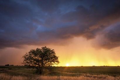 Stormy Sunset by Dan Ballard art print