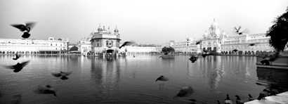 Reflection of Golden Temple, Amritsar, Punjab, India (black & white) by Panoramic Images art print