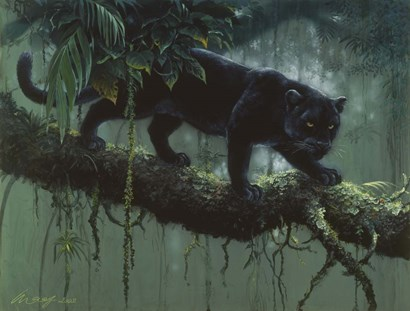 Black Jaguar by Harro Maass art print