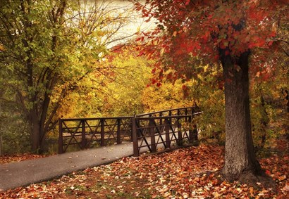 Autumn Footbridge by Jessica Jenney art print