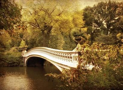 Autumn Gold by Jessica Jenney art print