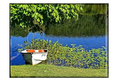 Country Pond Row Boat by Suzanne Foschino art print