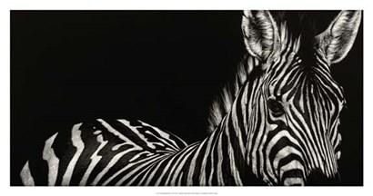 Scratchboard Incline by Julie Chapman art print
