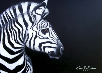 Zebra On Black by Cherie Roe Dirksen art print