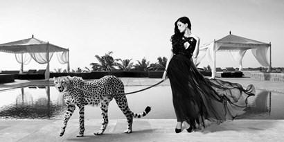 Woman with Cheetah by Julian Lauren art print