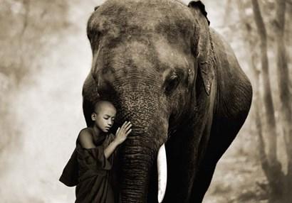 Healing Embrace by Marc Moreau art print
