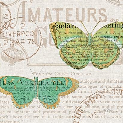Bookshelf Botanical IX by Katie Pertiet art print