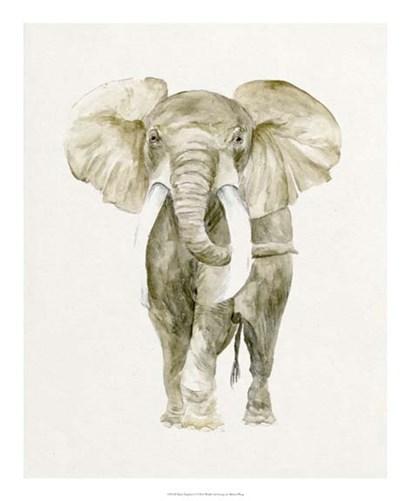 Baby Elephant I by Melissa Wang art print