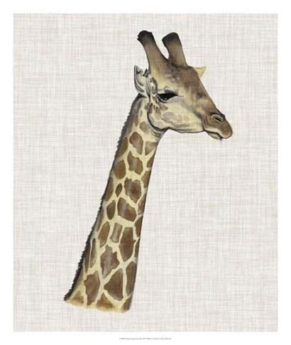 Savanna Impressions II by Naomi McCavitt art print