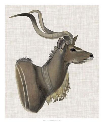 Savanna Impressions IV by Naomi McCavitt art print
