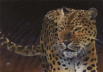 Leopard by Durwood Coffey art print