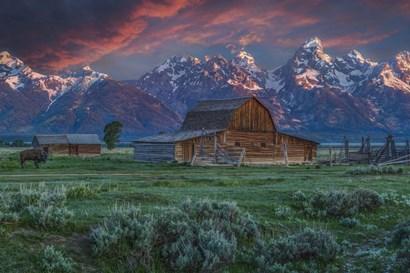 Grand Teton Mormon Barn At Sunrise by Galloimages Online art print