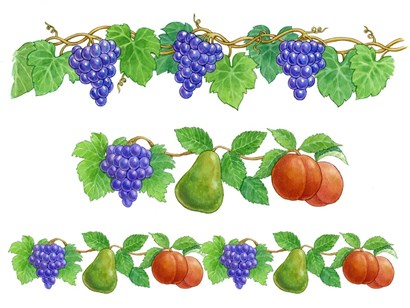 Grapes and Fruit borders by Geraldine Aikman art print