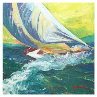 Regatta Colores by Suzanne Wilkins art print