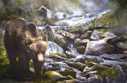 Bear by Murray Henderson Fine Art art print