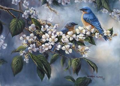 Apple Blossoms by Wanda Mumm art print