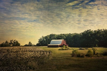 Red Barn At The Cotton Field by Jai Johnson art print