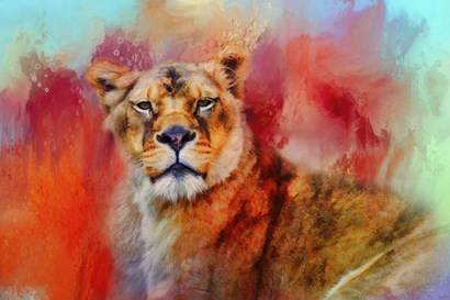 Colorful Expressions Lioness by Jai Johnson art print