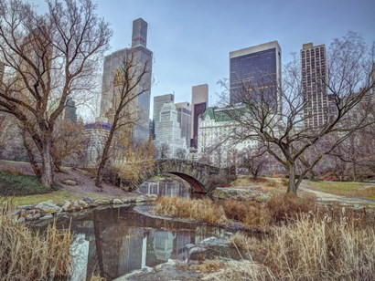 Central Park by Assaf Frank art print