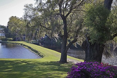 Middleton Place 3, SC by J.D. McFarlan art print