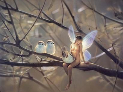 Feathered Friends - N by Kirk Reinert art print