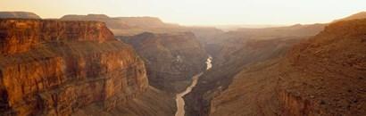 River passing through Toroweap Point, Grand Canyon National Park, Arizona by Panoramic Images art print