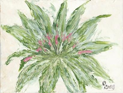 Succulent No. 1 by Roey Ebert art print