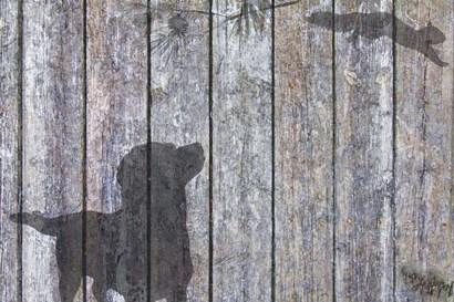 Lab And Squirrel Shadow by Murray Henderson Fine Art art print