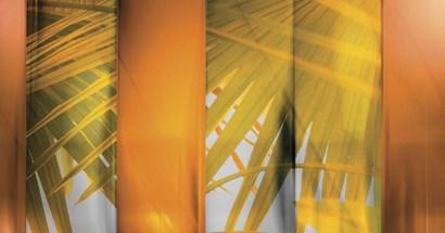 Tangerine and Cream by Posters International Studio art print