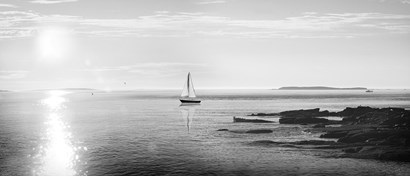 Evening Sail Black and White by Sue Schlabach art print