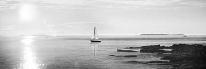 Evening Sail Black and White Crop by Sue Schlabach art print