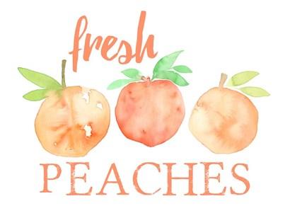Fresh Peaches II by Elise Engh art print