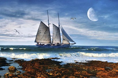 Seascape by Ata Alishahi art print