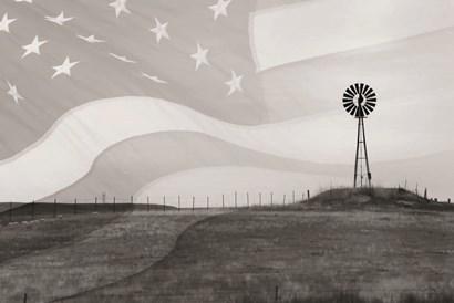 Patriotic Windmill by Lori Deiter art print