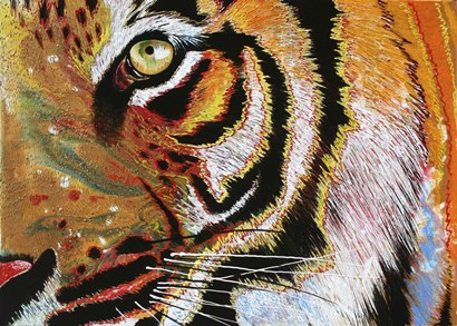 Tiger Burning Bright by Graeme Stevenson art print