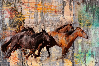 Galloping Horses by Surma & Guillen art print