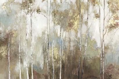 Fine Birch III by Allison Pearce art print