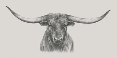 Longhorn Bull by Ethan Harper art print