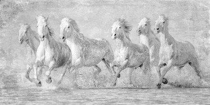 Water Horses V by PHBurchett art print