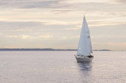 Sailboat in Semiahmoo Bay by Alan Majchrowicz art print