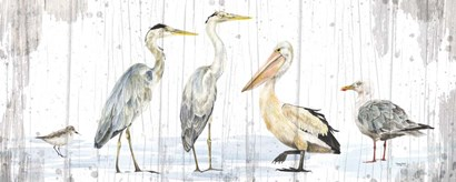 Birds of the Coast Rustic Panel by Tara Reed art print