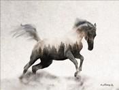 Running White Stallion