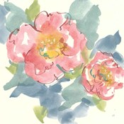 Peony in the Pink I