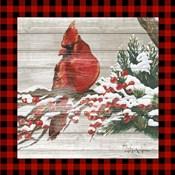 Winter Red Bird III